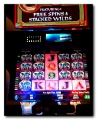 Leo Vegasカジノでの2900デポジットボーナスコードなし